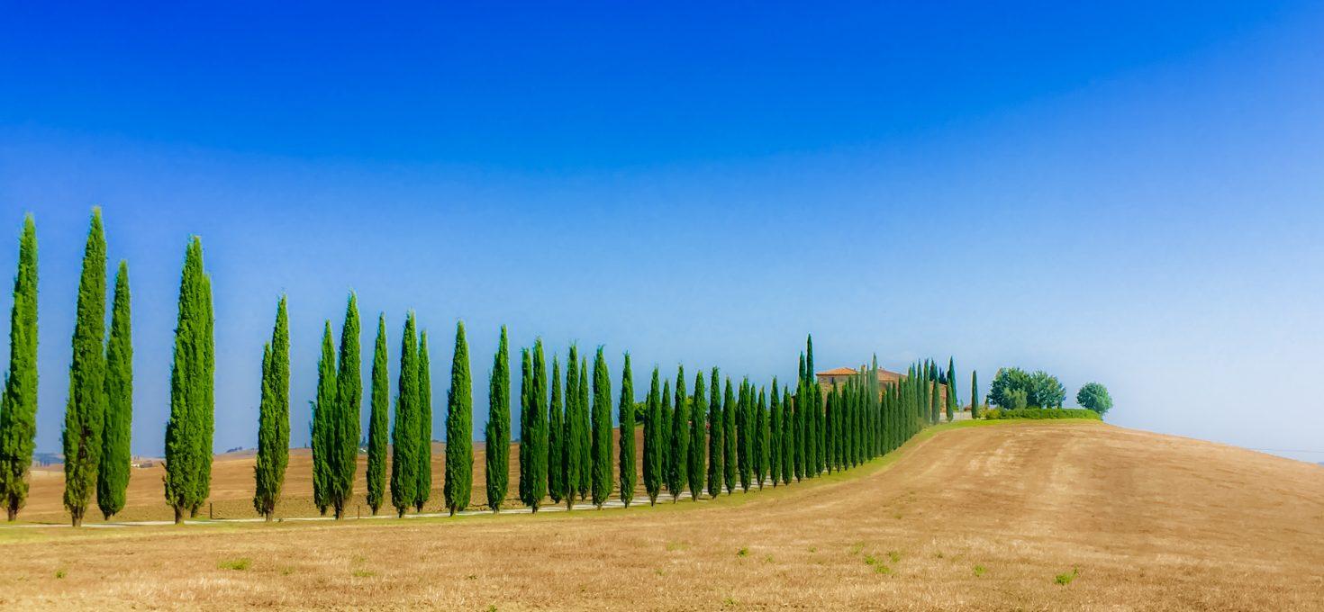 Italian Adventure episode 3 – Tuscany