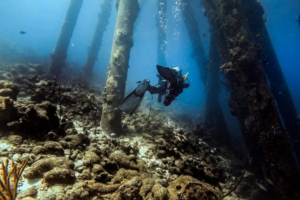 Diving in Bonaire