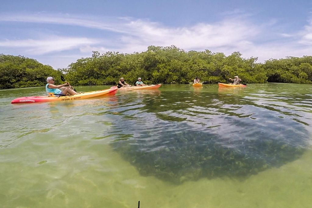 Kayaking in Bonaire