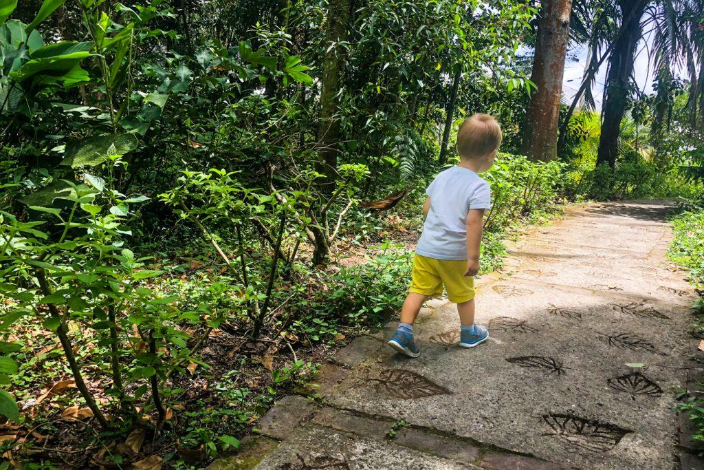 Quindio Botanical Garden