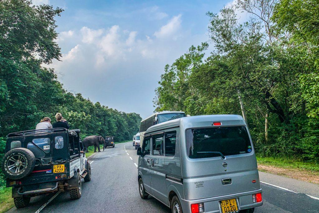 Sri Lanka temporary driving permit