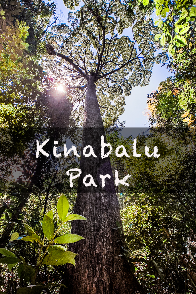 kinabalu park mountain adventure