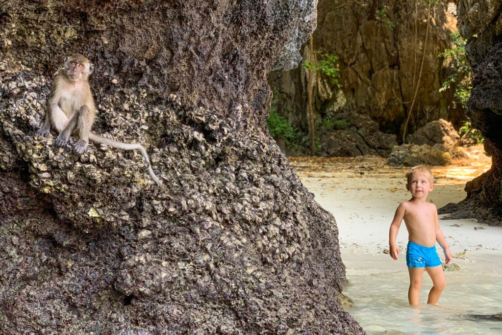 monkey beach with kids