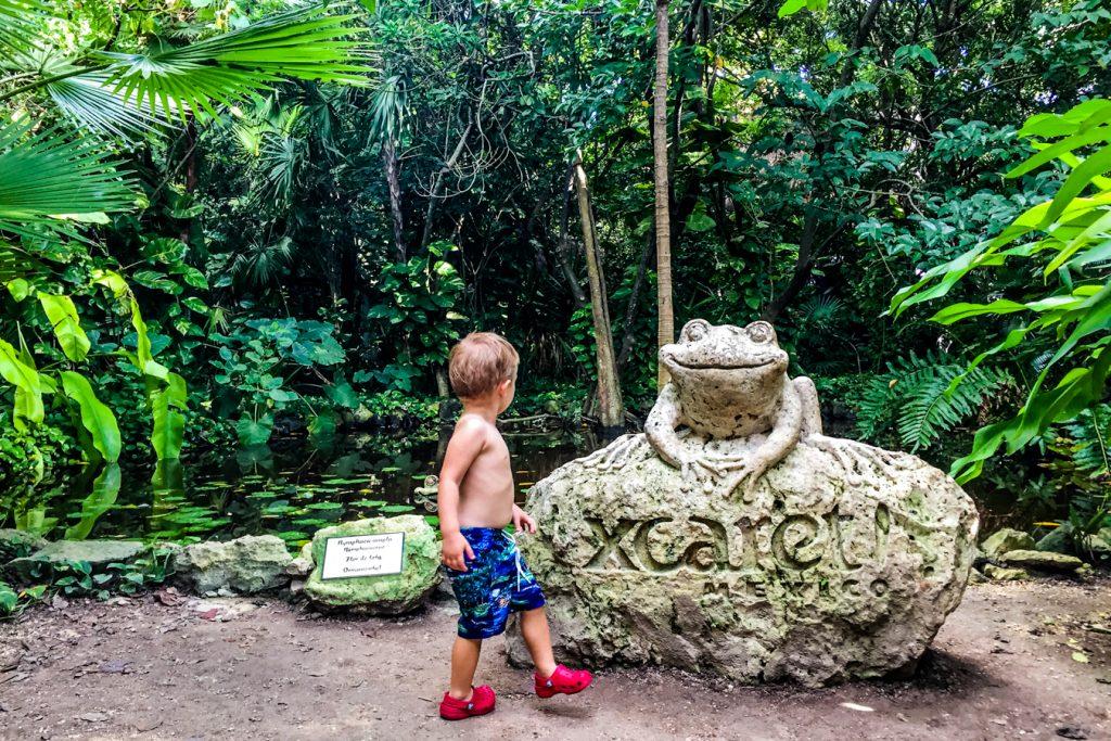 riviera maya activities