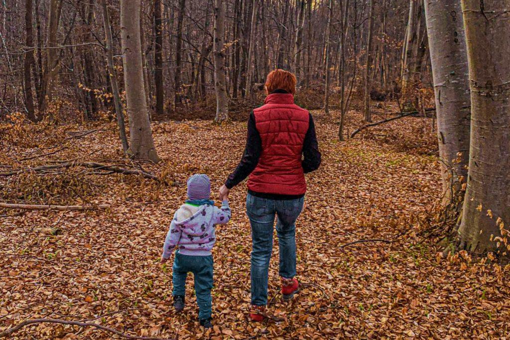 Padurea Faget langa Cluj cu copiii