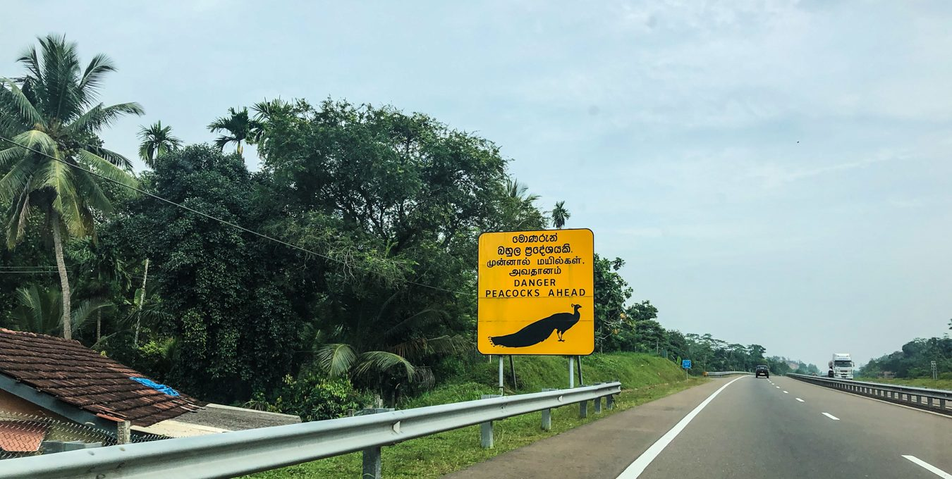 Driving as a tourist in Sri Lanka