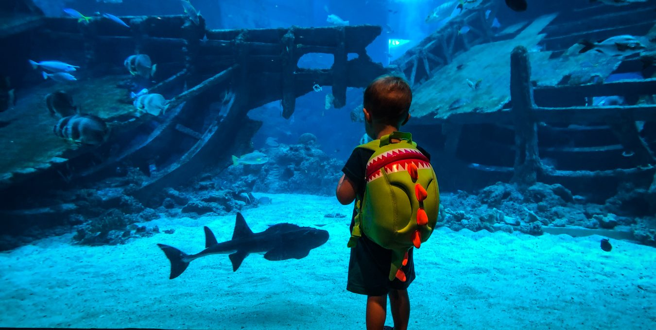 One day in Sentosa with a toddler