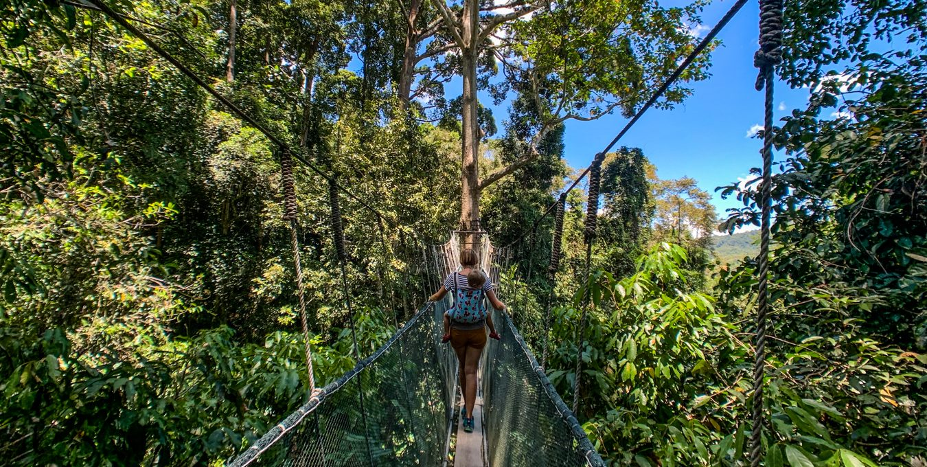 Mountain escape at Kinabalu Park
