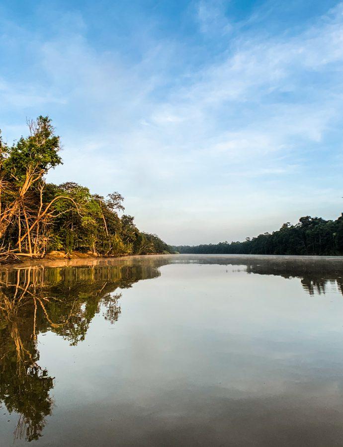 Looking for monkeys in Eastern Sabah